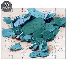 Aspirin crystals, SEM - Puzzle
