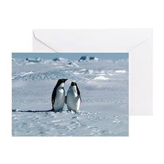 Penguin Pair Greeting Cards (Pk of 10)