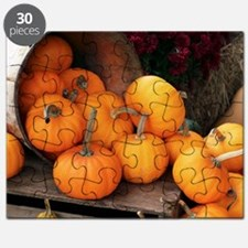 Harvested pumpkins - Puzzle