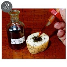 Iodine test for starch - Puzzle