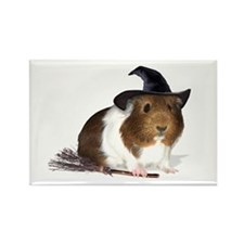 Guinea Pig Witch Magnet