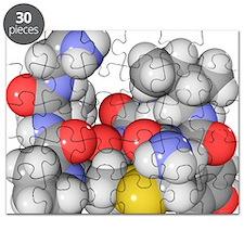 Oxytocin neurotransmitter molecule - Puzzle