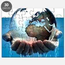 Polar ice caps melting, conceptual image - Puzzle