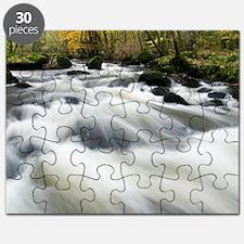 River Teign in autumn, Devon - Puzzle
