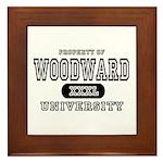 Woodward University Property Framed Tile