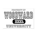 Woodward University Property Mini Poster Print