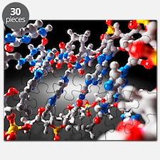 DNA molecule, artwork - Puzzle