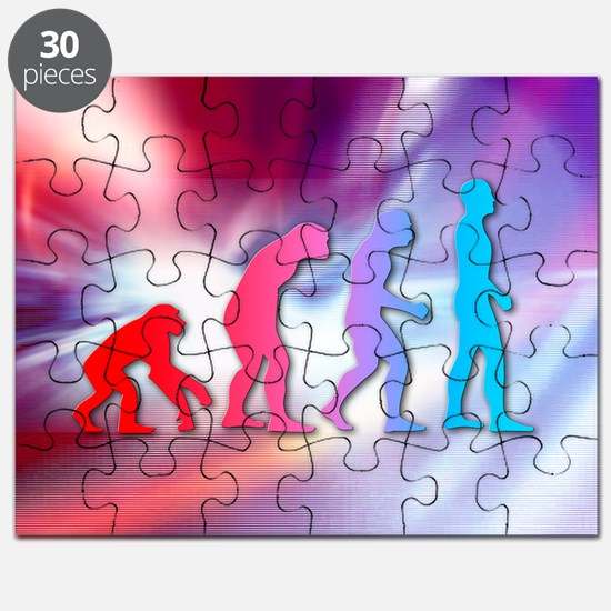 Human evolution - Puzzle