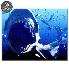 Megalodon prehistoric shark - Puzzle
