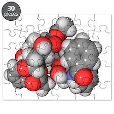Paclitaxel chemotherapy drug molecule - Puzzle