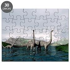 Sauropod dinosaurs - Puzzle