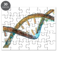 Unzipped DNA molecule, artwork - Puzzle