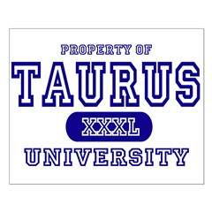 Taurus University Property Posters