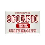 Scorpio University Property Rectangle Magnet