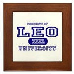 Leo University Property Framed Tile