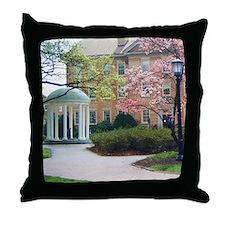 Cute Campus Throw Pillow