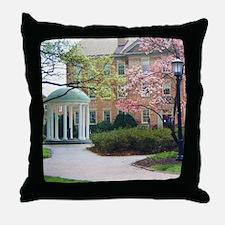 Unique Campus Throw Pillow