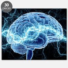 Human brain, conceptual artwork - Puzzle
