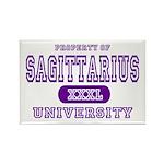 Sagittarius University Rectangle Magnet