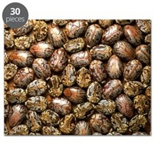 Seeds of the castor oil plant - Puzzle