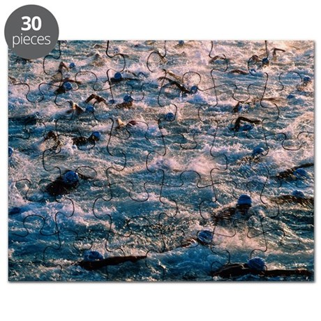 Triathlon swimmers - Puzzle