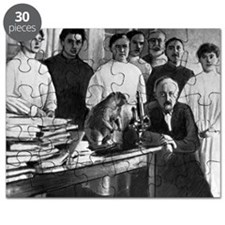 Zabolotny and colleagues, Kiev, 1929 - Puzzle