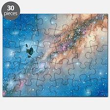Voyager spacecraft - Puzzle