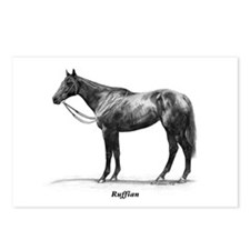 "Thoroughbred ""Ruffian"" Postcards (Package of 8)"