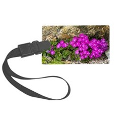 Alpine primula (Primula hirsuta) - Luggage Tag