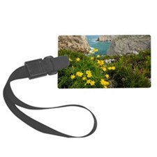 Wild Narcissus (Narcissus obesus) - Luggage Tag