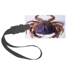 Dungeness crab - Luggage Tag