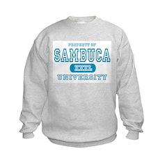 Sambuca University Alcohol Sweatshirt