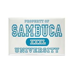 Sambuca University Alcohol Rectangle Magnet (10 pa