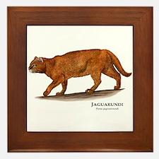 Jaguarundi Framed Tile