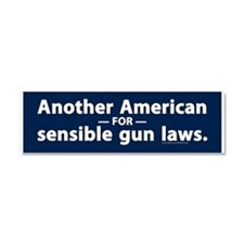 Sensible Gun Laws Car Magnet 10 x 3