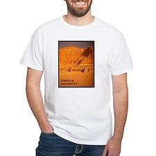African statues Shirt