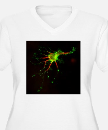 Cell structure, fluorescent micrograph - T-Shirt