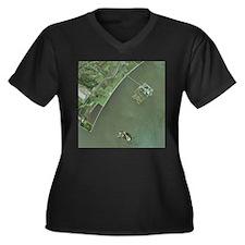 Ellis and Liberty Islands, aerial image - Women's