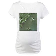 Ellis and Liberty Islands, aerial image - Maternit