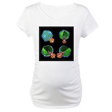 Bacteriophage P22, computer model - Shirt