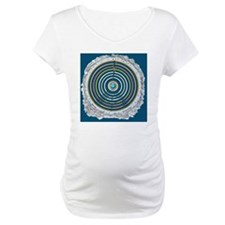Ptolemaic cosmology - Shirt