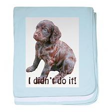 boykin spaniel puppy baby blanket