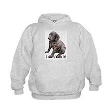 boykin spaniel puppy Hoody