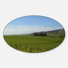 Bodega Highway Ca Sticker (Oval)