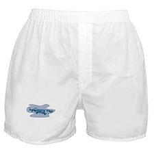 Sturgeon Fish Retro Boxer Shorts