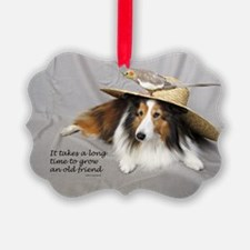 It takes a long time to grow an old friend Ornament
