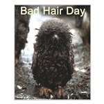 Bad Hair Day Small Poster