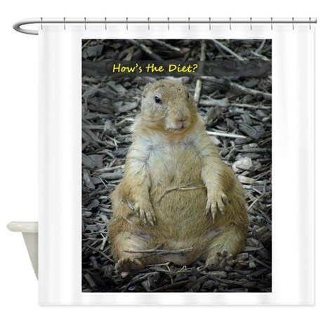 Hows the Diet? Shower Curtain