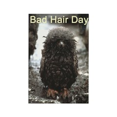 Bad Hair Day Rectangle Magnet