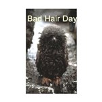 Bad Hair Day Rectangle Sticker
